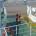 di Salvatore Faggiani – Con una deliberazione alquanto discutibile e parziale la Giunta Regionale sistema e risolve il problema dei collegamenti da e per Carloforte con una […]