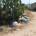 RICEVIAMO E PUBBLICHIAMO – Gentile Liberissimo… Già dall'inizio dell'estate vedo molti turisti che puntualmente hanno difficoltà a smaltire l'immondizia. Davanti casa mia hanno tentato diverse volte di […]