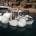 """Nuovo intervento della Ditta di recuperi Porto Massimo Snc. Nei giorni scorsi dopo un controllo accurato di sommozzatore in servizio locale abilitato, incaricato dalla """"Compagnie Fluviale de […]"""