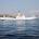 di Antonello Sagheddu – Il prossimo 30 settembre assisteremo nuovamente alla partenza delle navi (N.G.I. e Enermar) che per sei mesi hanno collegato La Maddalena a Palau. […]
