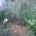 Spett.le enti, il sottoscritto Sanna Giampaolo residente a La Maddalena in via Chiusedda – E-mail Giampaolo_sanna@alice.it CHIEDE un immediato intervento nell'area pubblica in oggetto, riguardo l'area confinante […]
