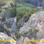 seggiolino roccia