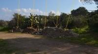 L'Amministrazione Comunale, a seguito delle numerose segnalazioni di abbandono di rifiuti pervenute negli ultimi mesi (amianto, inerti, ferrosi e indifferenziato urbano), ha predisposto una serie di interventi […]