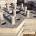 Il Gabbiano fotografo – Nei giorni scorsi l'Ente Parco ha acquistato nuovi corpi 'vivi' da posizionare sul fondale del nostro arcipelago. Sono costruiti con un cemento particolare […]