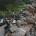Il Gabbiano ambiente – Qualche settimana fa il nostro amico Pino Lombardo ci aveva segnalato una vecchia discarica nella zona tra Nido D'Aquila e Villa Webber. Ieri […]