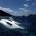Sono trascorsi sei giorni dal naufragio del catamarano francese che a causa delle condizioni meteorologiche avverse si è incagliato presso Punta Abbatoggia. Grazie al pronto intervento di […]