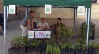 """Ha riscosso un grande successo l'iniziativa a scopo benefico denominata """"Un fiore di Isola"""", tenutasi domenica mattina in Piazza del Comune, organizzata dai ragazzi de L'Altra Isola […]"""