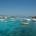 Non si placa la polemica, e non solo, a riguardo dei permessi e itinerari rilasciati alle varie imbarcazioni per trasportare passeggeri nell'Arcipelago di La Maddalena: sono numerose […]