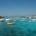 Non abbiamo scoperto certo l'acqua calda quando affermiamo che senza regolamento l'Arcipelago di La Maddalena sarà devastato. Intanto, proponiamo che anche durante il periodo invernale venga assunto […]
