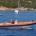 Nelle ultime settimane la Capitaneria di porto di La Maddalena ha effettuato una seri di controlli presso esercizi commerciali, ristoranti, pescherie anche all'interno di centri commerciali nonché […]