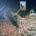 """Venerdì 27 marzo alle ore 10.30, nel Porto di Cala Gavetta a La Maddalena si terrà la cerimonia d'inaugurazione dell'opera """"Monolito sardo"""" di Fiorenzo Zaffina vincitore della […]"""