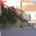 Nei giorni scorsi abbiamo pubblicato delle foto che riguardavano il cortile del Forte Sant'Andrea (denominata i Tozzi) inviateci da un amministratore. Felicissimi tutti gli abitanti della zona […]
