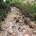 Di Mario Ferrigno – Le strade di Caprera sono state lasciate come in origine. Fondo argilloso (terra caccavìna)e pendenze varie con la parte centrale a schiena d'asino. […]