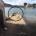 L'undici ottobre mentre ci recavamo a Punta Rossa in compagnia di amici abbiamo visto e fotografato due grossi sacchi di rifiuti (vedi foto del 23 novembre), davanti […]