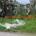 Come potrete notare dalle foto scattate nello spiazzo di Carlotto, sulla salita per Guardia Vecchia e in panoramica la situazione non cambia, abbiamo il sospetto che ci […]