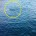 Segnalazioni varie da parte di cittadini. Sicuramente merita la più alta attenzione la perdita d'acqua nello specchio acqueo sotto il Ponte di Caprera. Sono ormai tanti anni […]