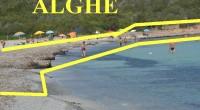 Dopo tanti anni sono ritornato nella spiaggia dei Due mari, ci sono andato con la mia famiglia e nipoti: insomma, senza ex Ministri, Presidente o Vice Sindaco. […]