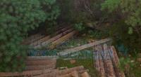 Dopo 22 anni siamo riusciti a fare ripulire, grazie al Presidente del Parco Giuseppe Bonanno e al Comando dei Vigili, la discarica a poca distanza dalla (ex […]