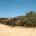 Nei giorni scorsi il personale dell'Ente Parco Nazionale dell'Arcipelago di La Maddalena ha provveduto a ultimare le operazioni di disarmo dei sistemi di ormeggio e di delimitazione […]