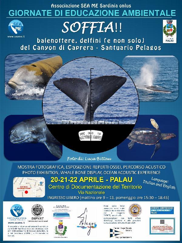 EVENTO SOFFIA 2017 PALAU_SEA ME Sardinia
