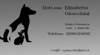 La dottoressa Elisabetta Gioacchini (veterinario), informa che effettua visite a domicilio. Telefono 328 9125932