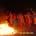 All'interno del perimetro del Parco è assolutamente vietato accendere fiamme di qualsiasi genere: in questi giorni giungono agli uffici dell'Ente segnalazioni di barbecue e falò accesi in […]