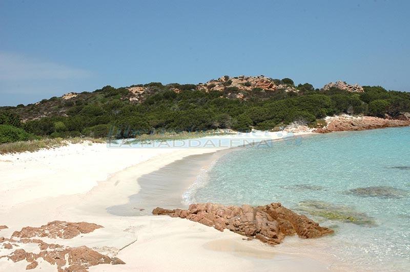 Budelli4 spiaggia rosa arcipelago La Maddalena