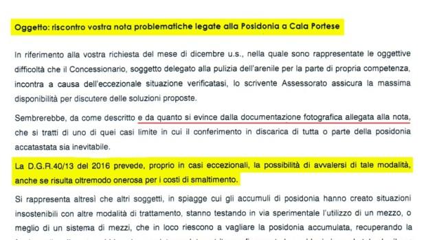 """A cura di Liberissimo.net e Guardiavecchia.net La """"Posidonia"""" è classificata dalla legge un rifiuto speciale. Tutti continuano a arrovellarsi il cervello, tra polemiche politiche e strascichi giudiziari […]"""