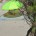 Capitaneria di Porto di La Maddalena GUARDIA COSTIERA INFORTUNATASI PRESSO L'ISOLA DI BUDELLI (FOTO IN ESCLUSIVA) Nel primo pomeriggio odierno, la Guardia Costiera di La Maddalena, sotto […]