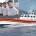 Nella mattinata di ieri la motovedetta CP 306 di La Maddalena ha lasciato l'isola per raggiungere Lampedusa. L'equipaggio, Composto dal Luogotenente Arialdo Deiara il Maresciallo Giuliano Fadda, […]
