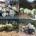 In questa circostanza hanno dato il loro prezioso contributo Giampiero Carcangiu, che per settimane ha messo insieme tutta la plastica e altri rifiuti dietro Caprera, Giuseppe Onorato, […]