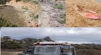 Le segnalazioni dei cittadini e di Liberissimo hanno permesso l'intervento di alcuni dipendenti dell'Ente Parco per rimuovere due imbarcazioni sulla spiaggia del Cardellino e nella Cala di […]