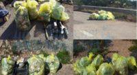 Oltre alle bombole del gas, scaldabagni, materiale ferroso, copertoni, indumenti ecc. ecc. sono stati riempiti un centinaio di sacchi di rifiuti. La Maddalena Ambiente ha provveduto a […]