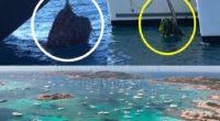 Durante la sosta di Liberissimo abbiamo ricevuto decine di foto che riguardavano il Parco Nazionale Arcipelago di La Maddalena. Immagini che riguardavano l'ancoraggio selvaggio, persone che fumavano […]