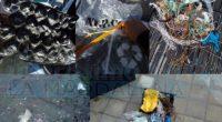 In un'altra occasione abbiamo segnalato il problema riportato dai frequentatori di Piazza Umberto. Il mercoledì molte retine e contenitori vari della frutta finisce puntualmente a mare, non […]