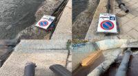 E' impensabile che un palo con la segnaletica stradale finisca a mare e nessuno veda nulla. La segnalazione di un palo nello specchio acqueo di Piazza Umberto […]
