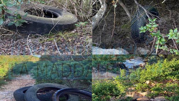 I nostri volontari Michela Aversano e Gianpiero Carcangiu hanno rinvenuto nuove discariche in zone con un panorama mozzafiato. Non capiremo mai il motivo di recarsi in posti […]