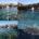 Nella giornata di ieri (sabato 23 maggio), al presidente dell'Ente Parco Fabrizio Fonnesu è pervenuta una segnalazione con documentazione fotografica di una boa segnalatrice sugli scogli dell'isola […]