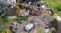 I ragazzi di Maddalena Ambiente sono continuamente chiamati a ripulire zone colme di rifiuti lasciati dai soliti abituali. L'ultimo intervento riguardava la zona di Puntiglione. Una volontaria […]