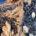 In più occasioni abbiamo segnalato certe situazioni che riguardano il catrame a Caprera, Santa Maria, Razzoli ecc. ecc.: come parlare al muro. Più persone hanno chiesto perché […]