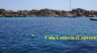 Nella serata del 12 luglio i vandali del mare sono entrati in azione a Cala Coticcio nell'isola di Caprera. Il cavo tarozzato, di nuovo posizionamento, che delimita […]
