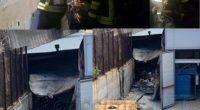 Vigili del Fuoco di Sassari. La sala operativa dei vigili del fuoco ha ricevuto intorno alle 21.00 una richiesta d'intervento a La Maddalena in via Principe Amedeo. […]
