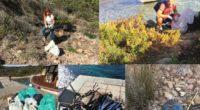 Di Gabriella Selva (Verona) Buongiorno a tutti i lettori di Liberissimo. Ho piacere a raccontarvi la mia esperienza di volontaria del Gruppo Un Arcipelago Senza Plastica. Ne […]